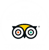 TripAdvisor Certificate of Excellent 2019 Badge